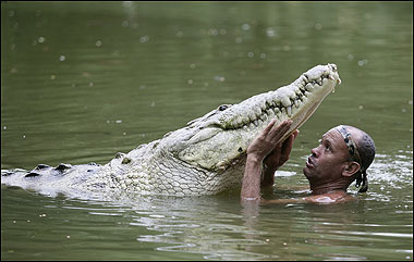 The Crocodile Whisperer